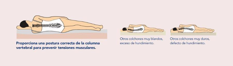 La postura correcta de la espalda es vital para un buen descanso